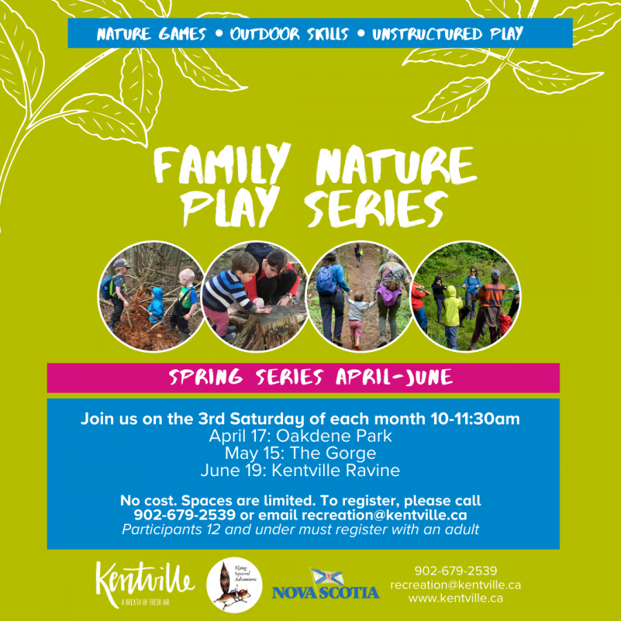 Family Nature Play Series Poster
