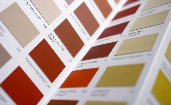 Paint colour swatches